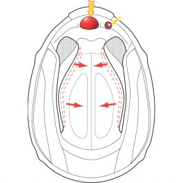 Integralna čelada Exo-510 Air Cross – Scorpion